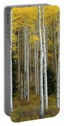 Aspen Trunks Portable Battery Charger