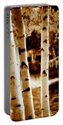 Aspens Lll Portable Battery Charger
