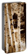 Aspens S L Portable Battery Charger