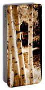 Aspens S Ll Portable Battery Charger