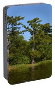 Atchafalaya Basin 41 Portable Battery Charger