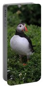 Atlantic Puffin Portable Battery Charger