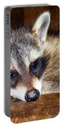 Au Naturale Coonie Portable Battery Charger