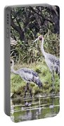 Australian Cranes At The Billabong Portable Battery Charger