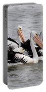 Australian Pelicans Portable Battery Charger