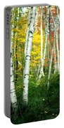 Autumn Birch Grove Portable Battery Charger