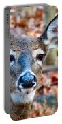 Autumn Buck Portable Battery Charger