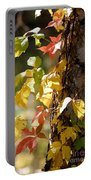 Autumn Colors Portable Battery Charger