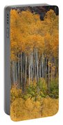 Autumn Curtain Portable Battery Charger