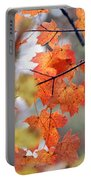 Autumn Day Dream Portable Battery Charger