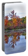 Autumn Diversity Portable Battery Charger