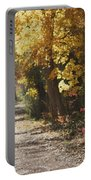 Autumn Dreams With Texture Portable Battery Charger