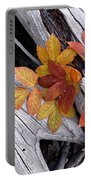 Autumn Driftwood 2 Portable Battery Charger