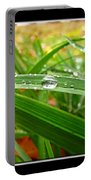 Autumn Drops Portable Battery Charger