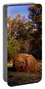Autumn Evening Light Portable Battery Charger