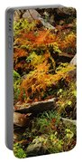 Autumn Ferns On Pickle Creek At Hawn State Park Portable Battery Charger