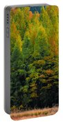 Autumn Fire Portable Battery Charger