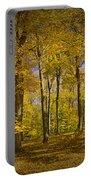Autumn Forest Scene In West Michigan No.1140 Portable Battery Charger