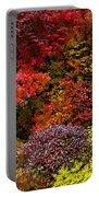 Autumn Fusion Portable Battery Charger