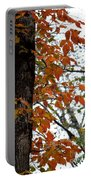 Autumn Glory At Tannehill Portable Battery Charger