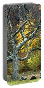 Autumn Grandfather Tree 2 Portable Battery Charger