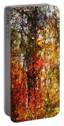 Autumn In The Woods Portable Battery Charger by David Lane