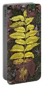 Autumn Leaf Art I Portable Battery Charger