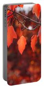 Autumn Leaves In Medford Portable Battery Charger