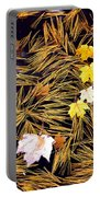 Autumn Leaves On Straw On Water Portable Battery Charger