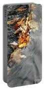 Autumn Leaves Tiny Dam Portable Battery Charger