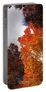 Autumn Looking Up Portable Battery Charger