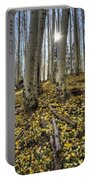Autumn Memoirs  Portable Battery Charger