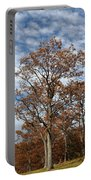 Autumn Oaks White Clouds Portable Battery Charger