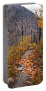 Autumn Path Portable Battery Charger