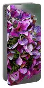 Autumn Purple Iv Portable Battery Charger