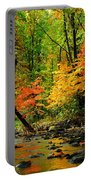 Autumn Reflects Portable Battery Charger