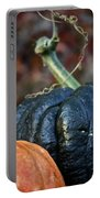 Autumn Riches Portable Battery Charger