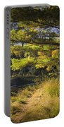 Autumn Scene Of The Little Manistee River In Michigan No. 0882 Portable Battery Charger