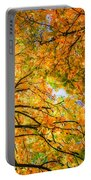 Autumn Sky Portable Battery Charger