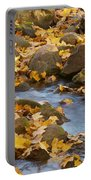 Autumn Slipping Away 0437 Portable Battery Charger