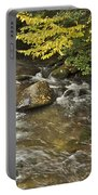 Autumn Stream 6149 Portable Battery Charger