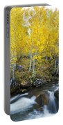 Autumn Stream Iv Portable Battery Charger