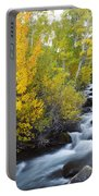 Autumn Stream V Portable Battery Charger