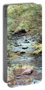 Autumn Streams Portable Battery Charger