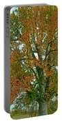 Autumn Sweetgum Tree Portable Battery Charger