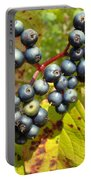 Autumn Viburnum Berries Series #3 Portable Battery Charger