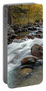 Autumn View Portable Battery Charger