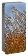 Autumn Wind Through The Grass Portable Battery Charger