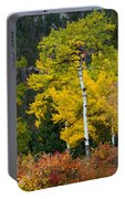 Autumn Wonder Portable Battery Charger