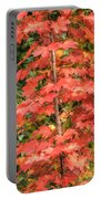 Autumnal Acer Portable Battery Charger
